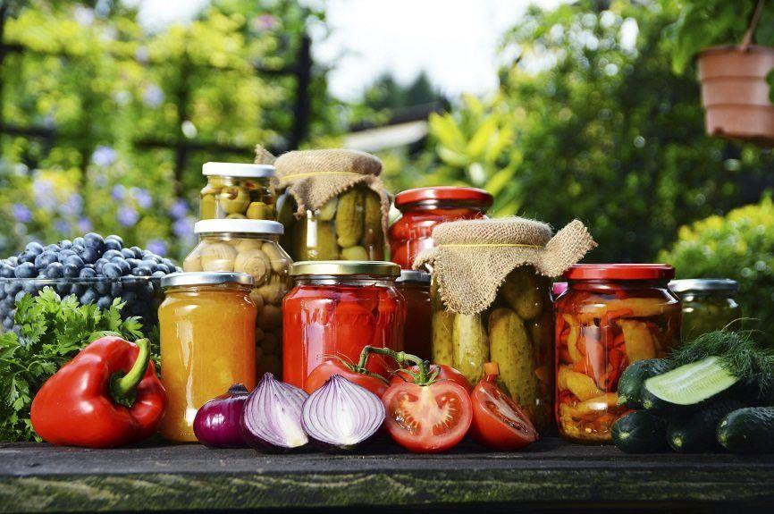 fermente yiyeceklerin önemi - sağlığa etkisi 1
