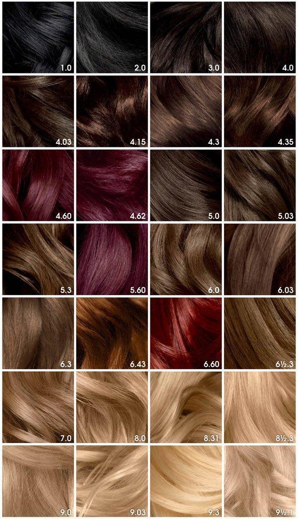 Garnier Saç Boyaları Ve Renk Kataloğu