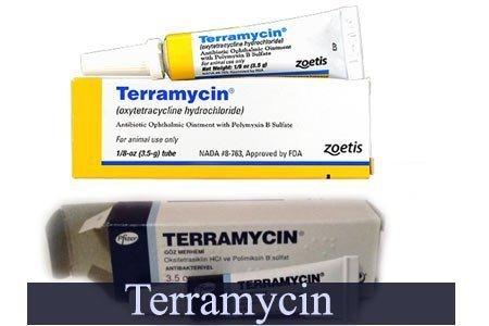teramisin krem cilt üzerindeki etkileri 1