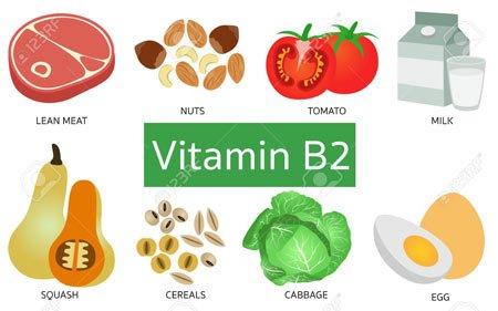 vitamin b2 riboflavin hangi besinlerde bulunur? eksikliği sonuçları 3