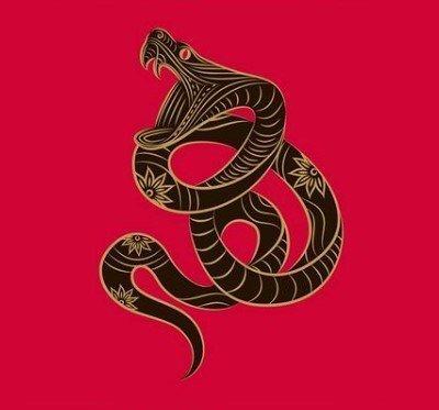yılan burcu