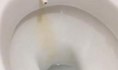 sararan klozet nasıl temizlenir? tuvalet temizliği nasıl yapılır? 4